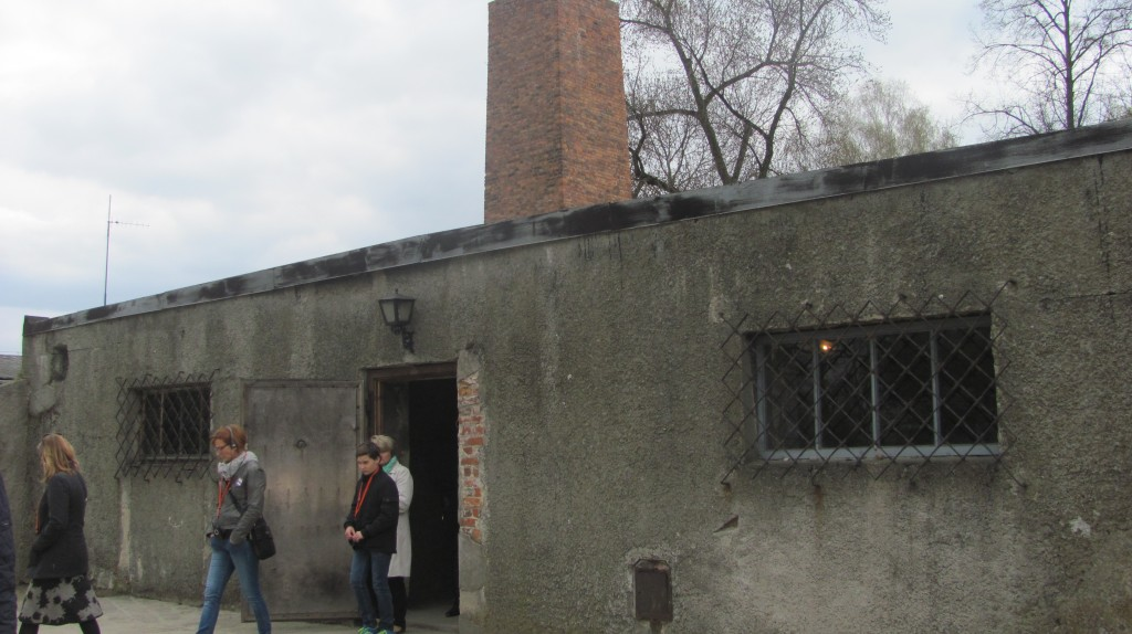 I was able to walk inside this gas chamber. Wires lined the walls and ceilings where the gas was dispensed. The next room over showed a machine that would push the bodies into the crematorium. The Germans could kill thousands of Jews a day in this way.